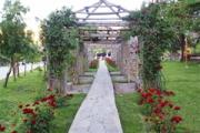 Paseo Las Rosas
