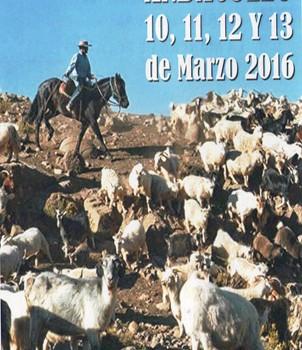 23º Fiesta Provincial del Veranador